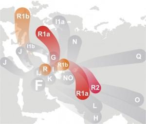 702px-Haplogroup_R_(Y-DNA)